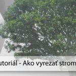 Photoshop návod: Ako vyrezať strom