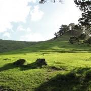 Nový Zéland 02 - Mangere Moutain