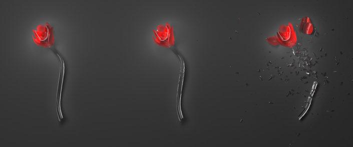 3D | Flowers